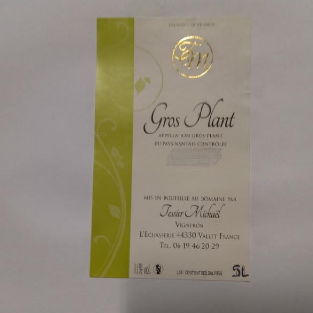 GROS-PLANT 2020 BIB 5L